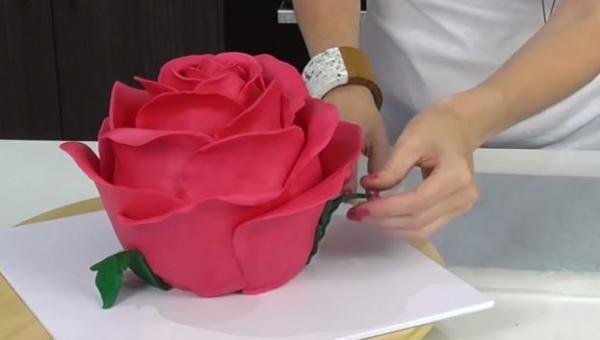 Wygląda jak ogromna sztuczna róża, ale gdy zobaczyłam środek? WOW!!