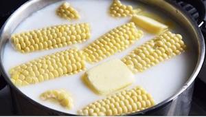 Gdy koleżanka zaczęła gotować kolby kukurydzy w mleku byłam sceptycznie nastawio